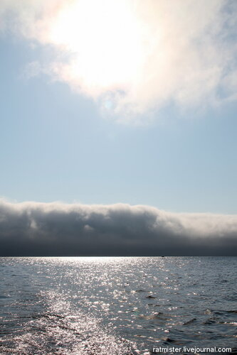 В заливе Петра Великого, Японское море (2)