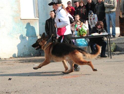 http://img-fotki.yandex.ru/get/6302/134559744.2/0_73145_e9f84fa2_L.jpg