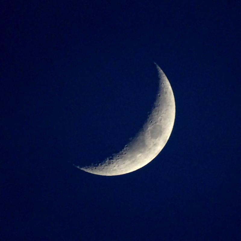Молодая Луна