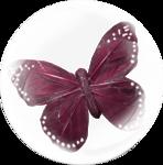 «A butterfly is a flying flower»  0_86a1b_c04b71d_S