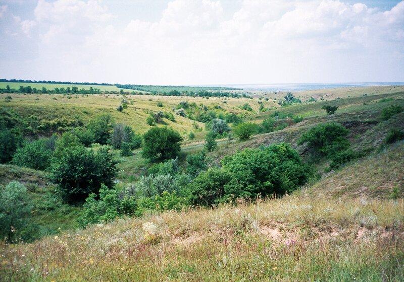 Степь, Белокалитвенский район Ростовской области