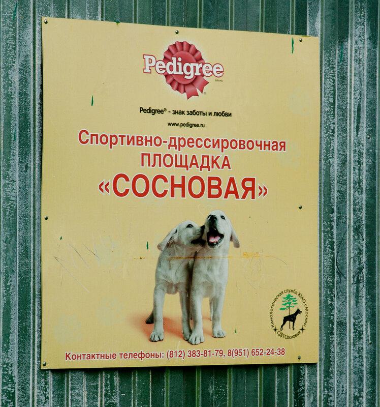 http://img-fotki.yandex.ru/get/6302/47020557.42/0_96d87_388d1cfe_XL.jpg