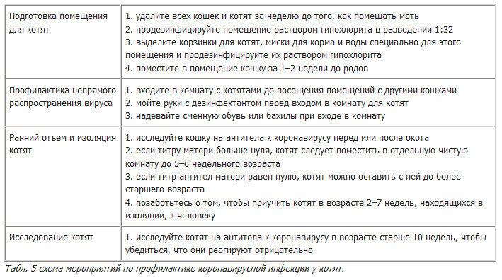 Общая патология/гистопатология