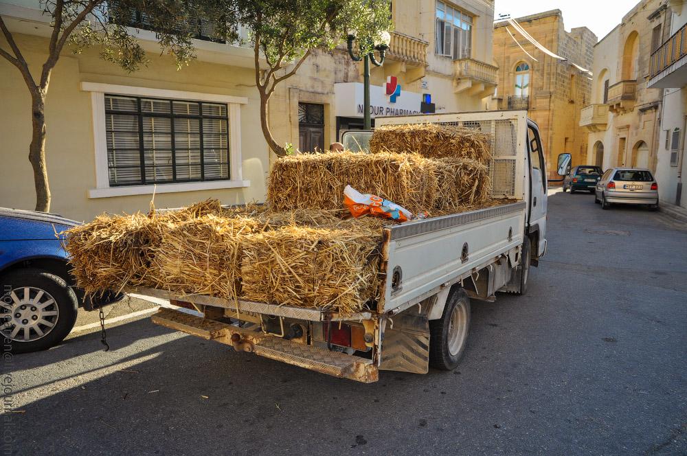 Malta-(2).jpg