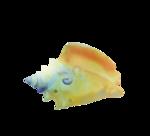 JofiaD-windfromsea-shell5.png