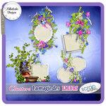 «La_magie_des_fleurs» 0_86250_8c8ae112_S
