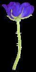 «La_magie_des_fleurs» 0_8627c_2faeb23b_S