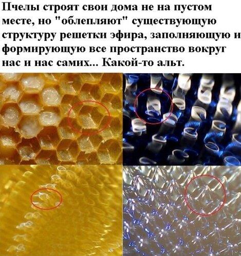 Новые картинки в мироздании 0_99563_4532ce3e_L