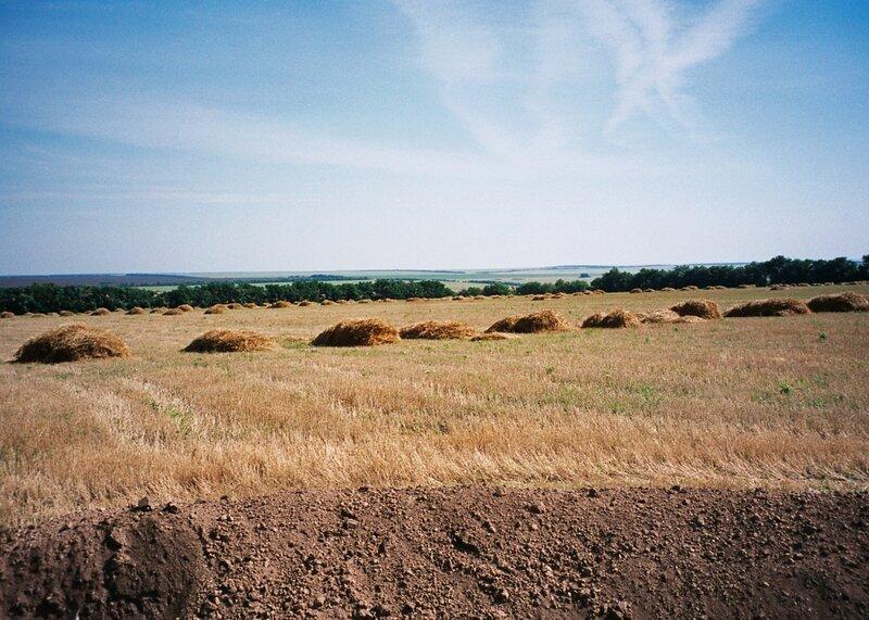 Нижнедонские Частые курганы, Белокалитвенский район Ростовской области