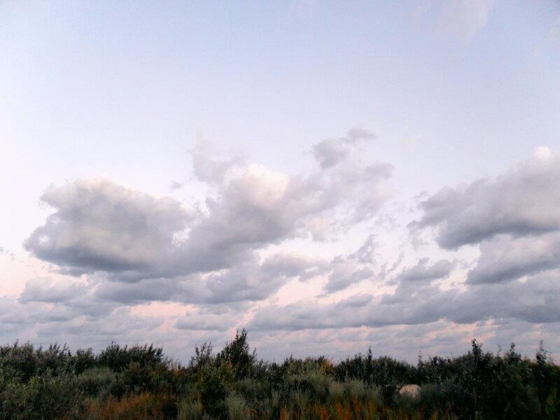 Утро на Ачуевской косе, август 2011