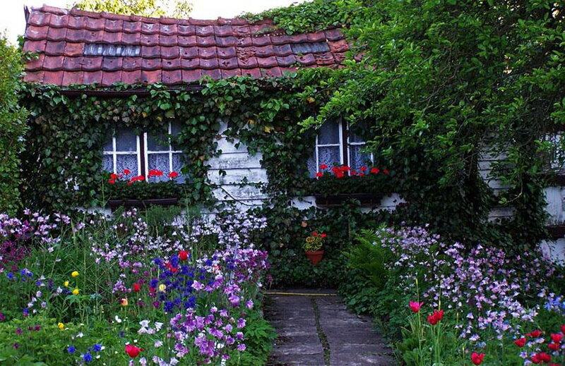 Дома, палисадники, цветы...мечты...:))) Многофото классных.: 000cosm