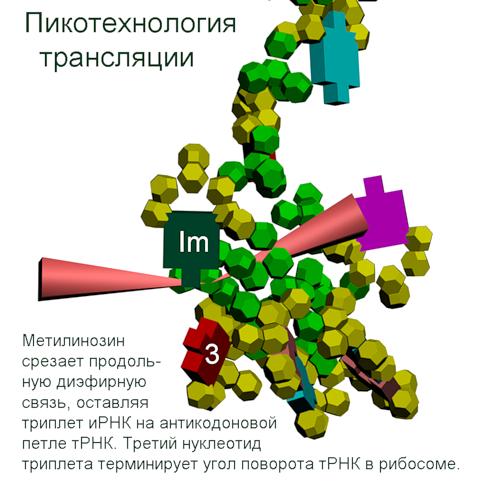 http://img-fotki.yandex.ru/get/6304/126580004.53/0_bcc4e_787f7706_orig