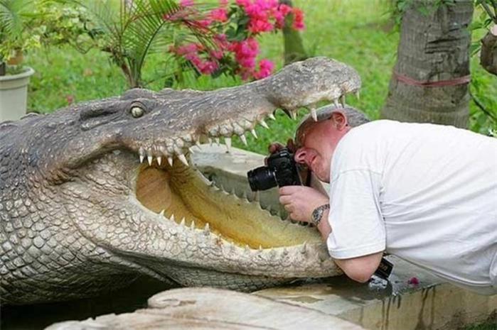 На что готовы смелые фотографы ради хорошего кадра 0 146ad3 40a67728 orig