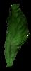 PrelestnayaP_3_kit 0_85c1a_578f4493_XS
