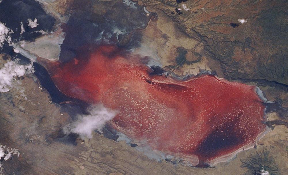 lakescientist Натрон— соленое ищелочное озеро, расположенное насевере Танзании. Его глубина непр