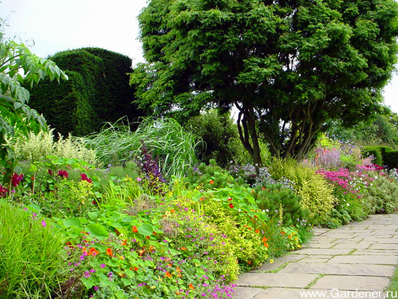 Миксбордер как нельзя более подходит для сада в ландшафтном стиле, напоминающего уголок дикой природы.