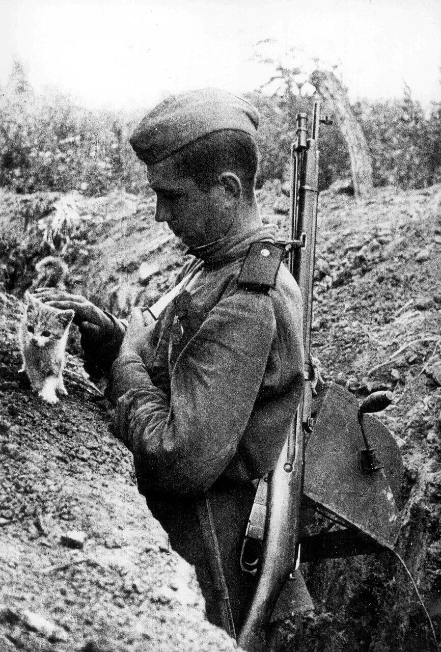 Фото 1941-1945