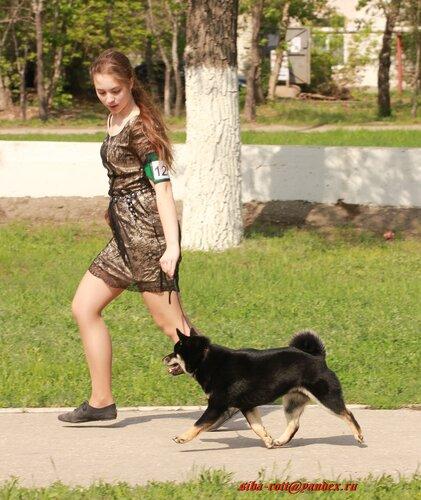 http://img-fotki.yandex.ru/get/6304/44768692.48/0_76dc9_80ee5806_L.jpg