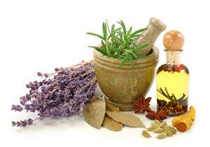 лекарственные растения +и травы