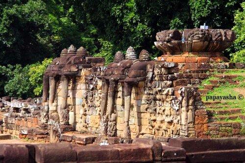 терасса слонов