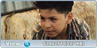 «Весёлые» каникулы / Get the Gringo (2012) BDRemux + BDRip 1080p + 720p + DVD9 + DVD5 + HDRip + DVDRip + AVC