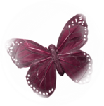 «A butterfly is a flying flower»  0_86ad0_e1bd2dcf_S