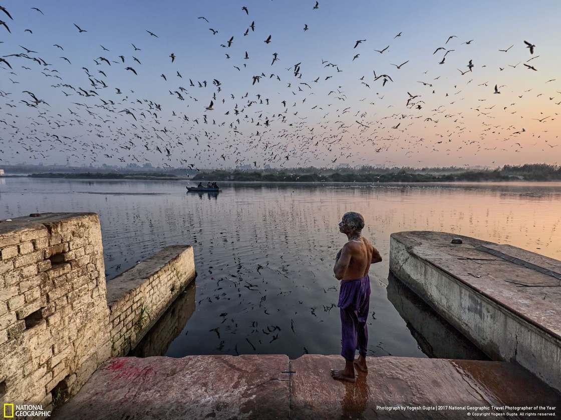 © Yogesh Gupta
