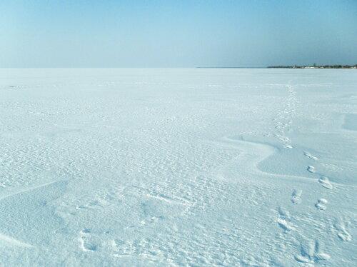 На льду, март