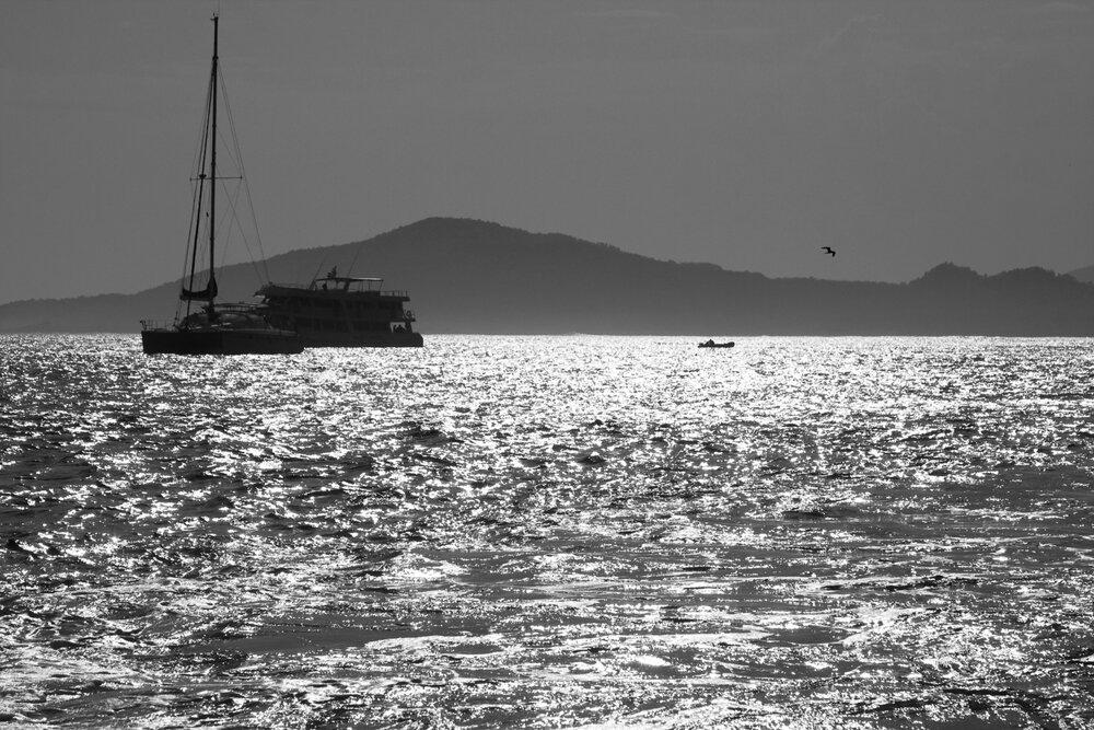 Яхта. Птица. Остров.