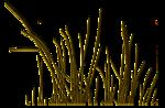 LTD_SB_element 58.png