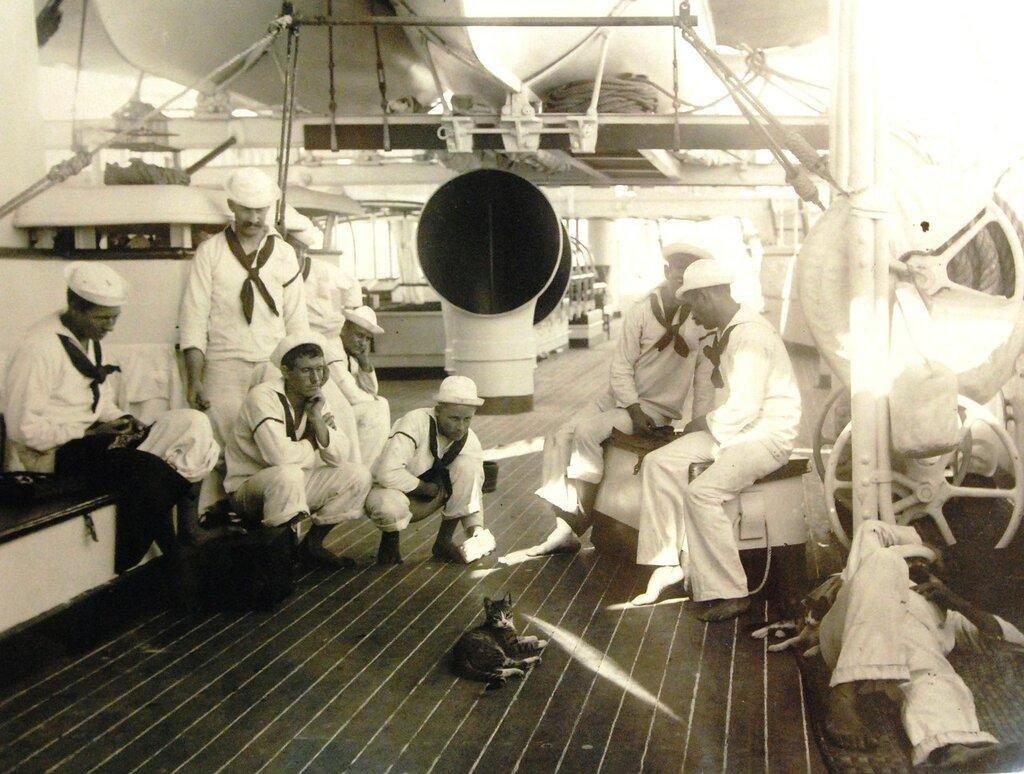 USS Olympia (Cruiser #6), group of sailors next to cat mascot, circa 1899.
