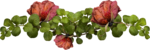 MRD_RT_dried rose cluster.png