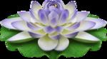 «ChinoiserieMBW» 0_85e6c_e5093a_S
