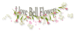«whitebell flowers»  0_87a0a_972f9c6b_S