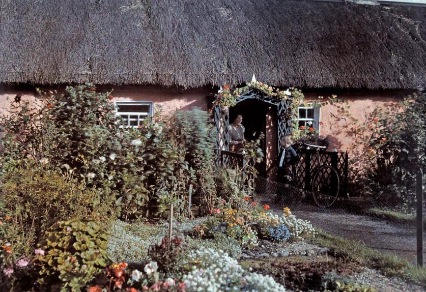 Коттедж с соломенной крышей и большим палисадником.