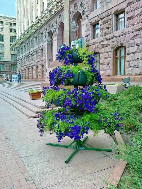 Цветочная горка под киевской мэрией