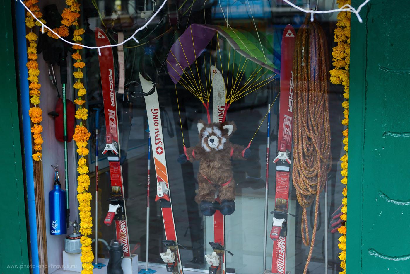 11. Только в Гималаях водится красная панда. 4.0, 1/160, 1000, 55.