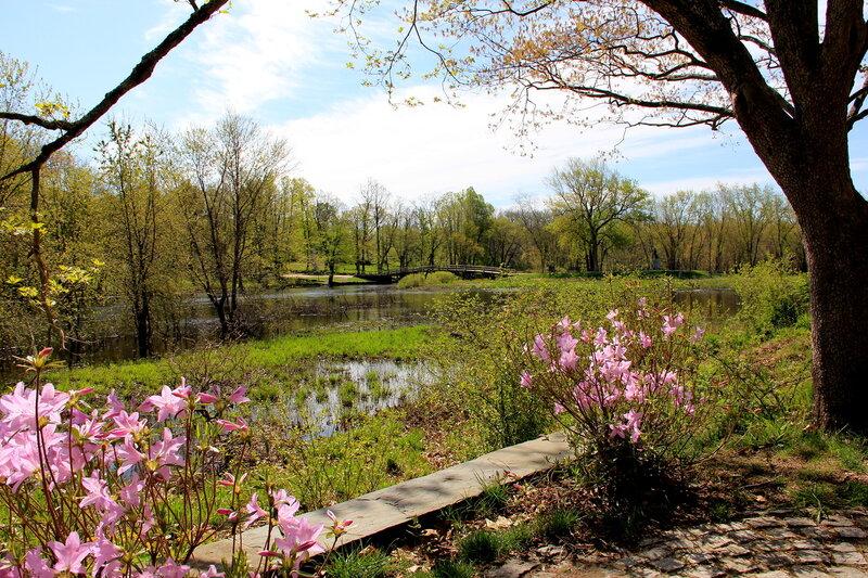 Весна в парке Конкорда.