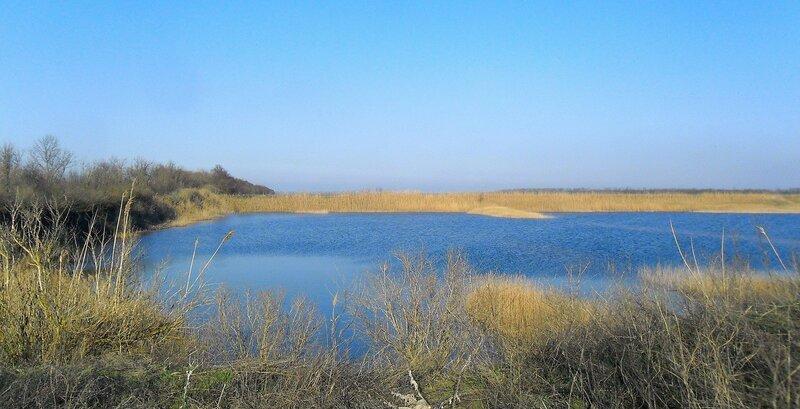 У озера ... SAM_5455.JPG