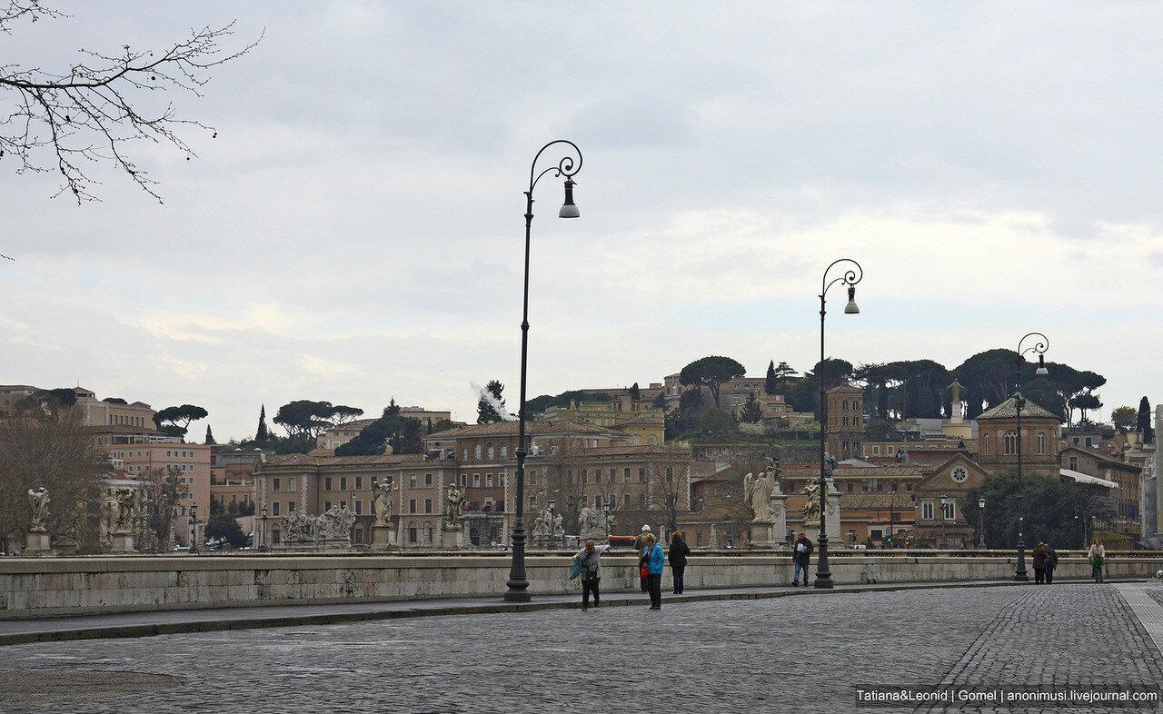 Рим обыкновенный