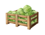 ShayD_Countrylife_element22.png