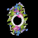 «La_magie_des_fleurs» 0_86254_5df233f4_S