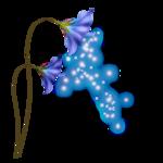 «La_magie_des_fleurs» 0_86274_5e3a1952_S