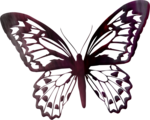 «A butterfly is a flying flower»  0_86ad6_af61488a_S
