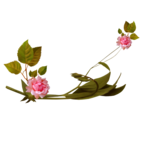 «Oh_Rose»  0_8788b_bf7cdcbd_S