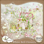 «whitebell flowers»  0_8798f_e25930ff_S