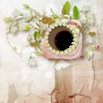 «whitebell flowers»  0_87a08_bb6951fd_S
