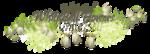 «whitebell flowers»  0_87a0d_eaeebdf1_S