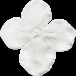 jss_oohhlala_flower 1 gray light.png