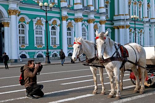 Фотографы и кони на дворцовой.
